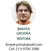 Diretoria Colegiada brayer2